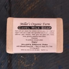 Camel Milk Soap – unscented – 3 oz