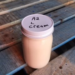 Light Cream – A2/A2 – Glass