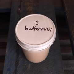 Goat Buttermilk – 8oz – Glass